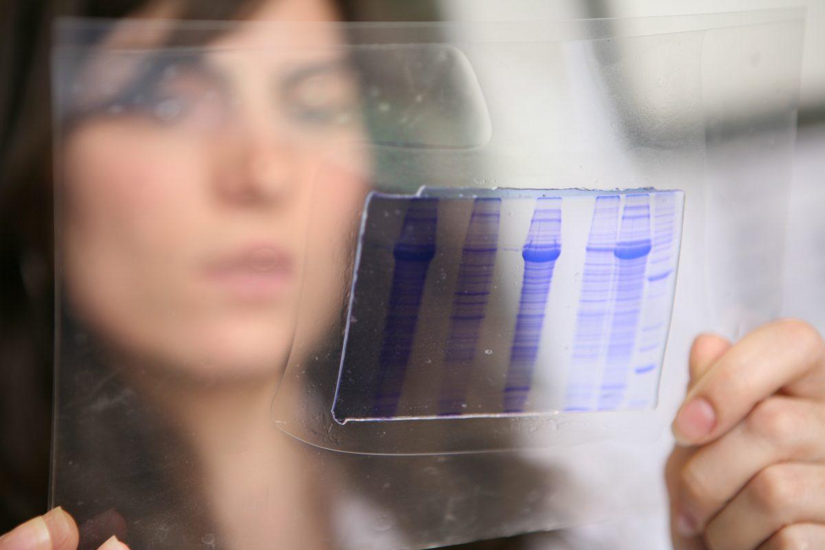 Algenex Lab