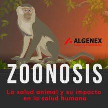 Infografía sobre Zoonosis: la salud animal y su impacto en la salud humana